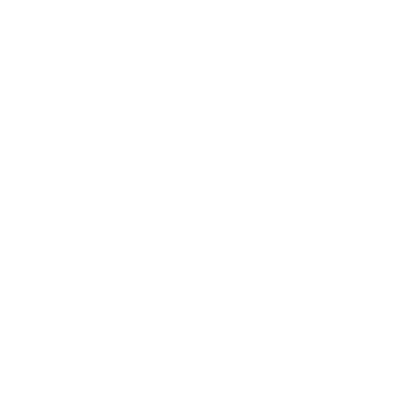 icon1-01-01